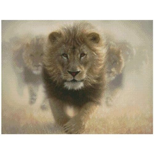 Eat My Dust Counted Cross Stitch Kit